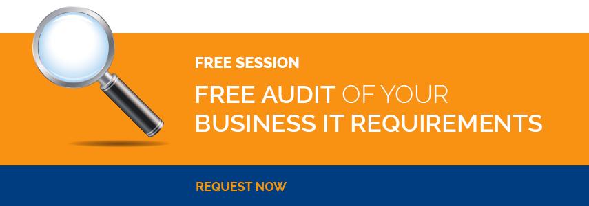 free business it audit